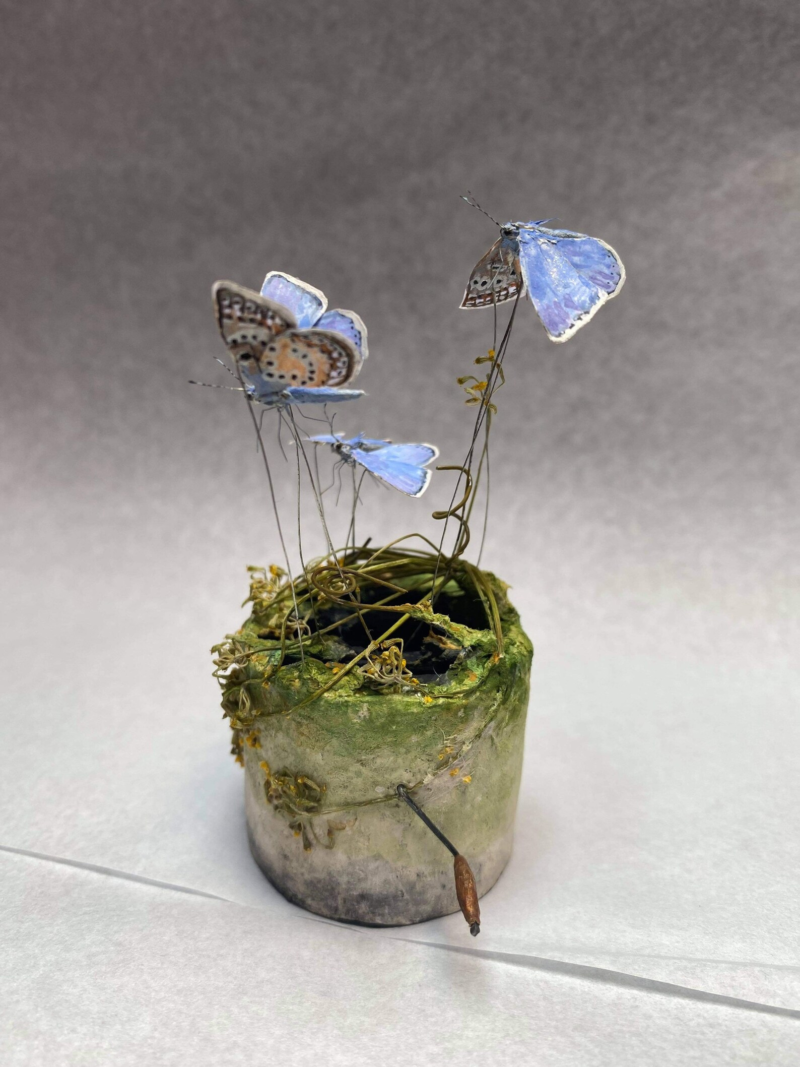 creatures-fly-and-swim-through-lush-ecosystems-in-kinetic-miniatures-by-penny-thomson